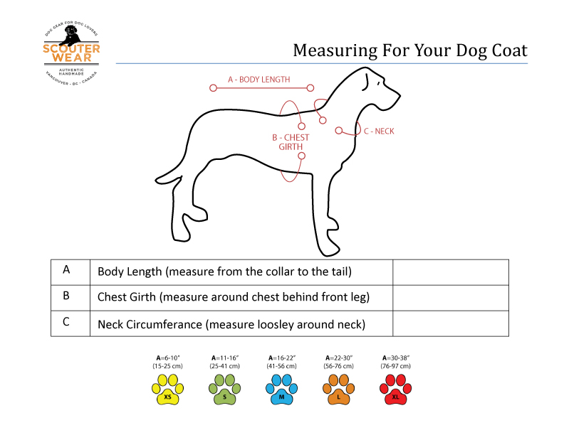 Measuring your dog for a coat